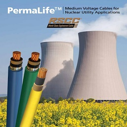 Resized - PermaLife Nuclear Brochure Cover